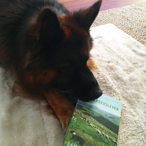 Het Herdersleven - James Rebanks - boekrecensie