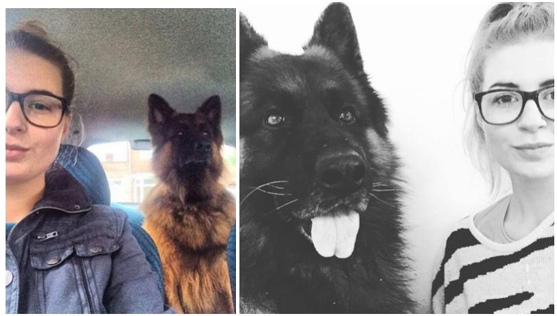 lessen-die-ik-leerde-van-mijn-hond