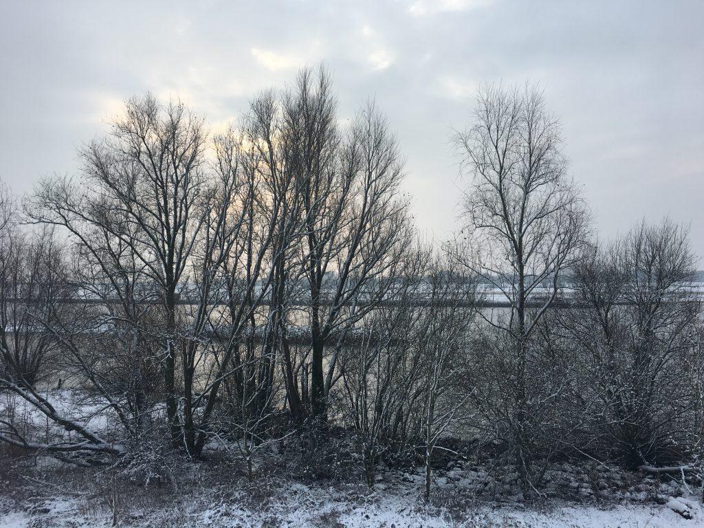 Sneeuw in Vreeswijk