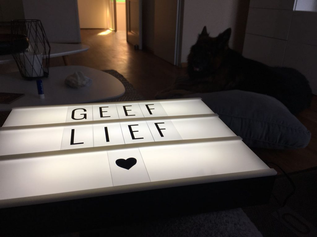 Lightbox CoolGift