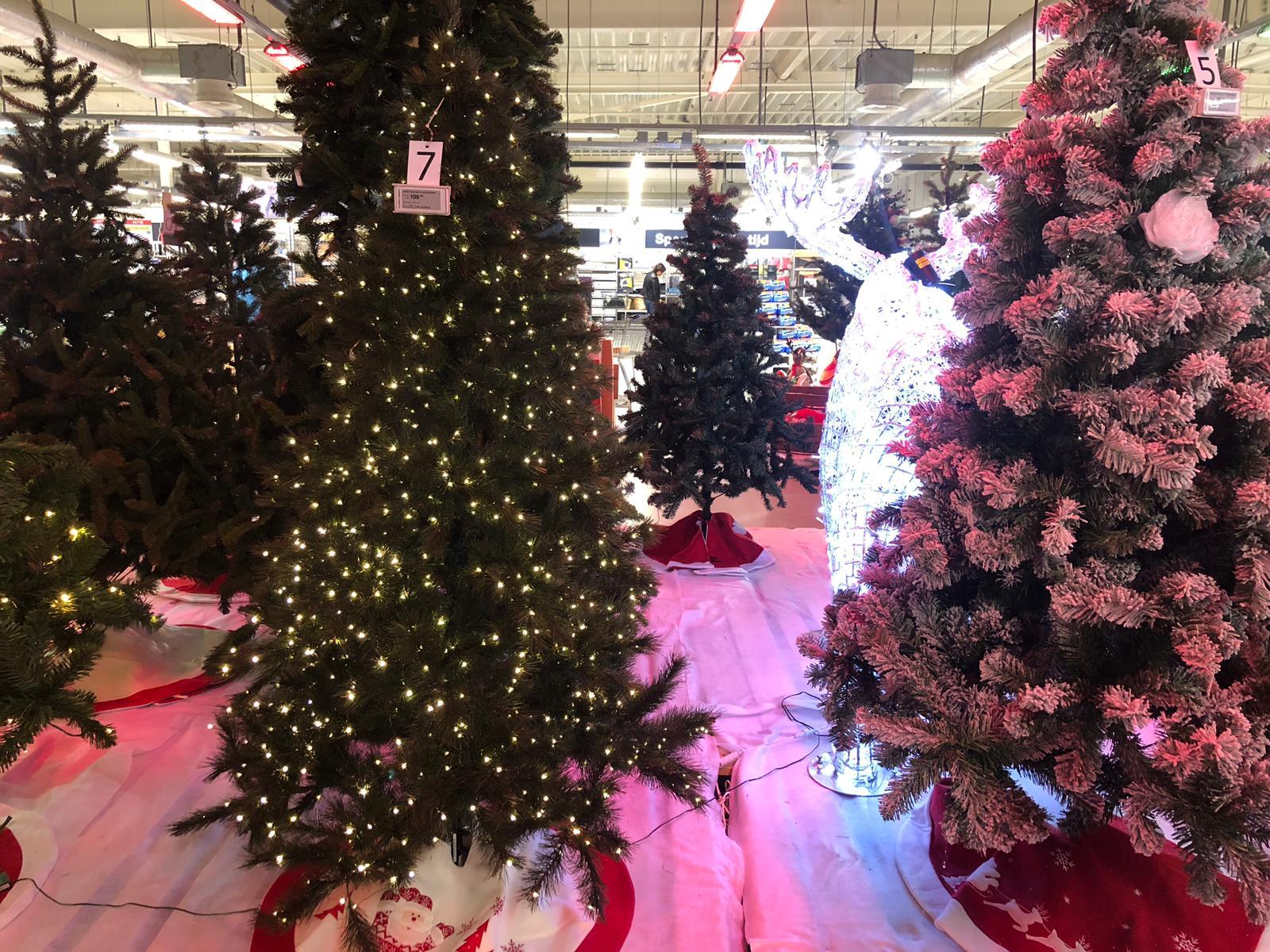 Kerstbomen Makro
