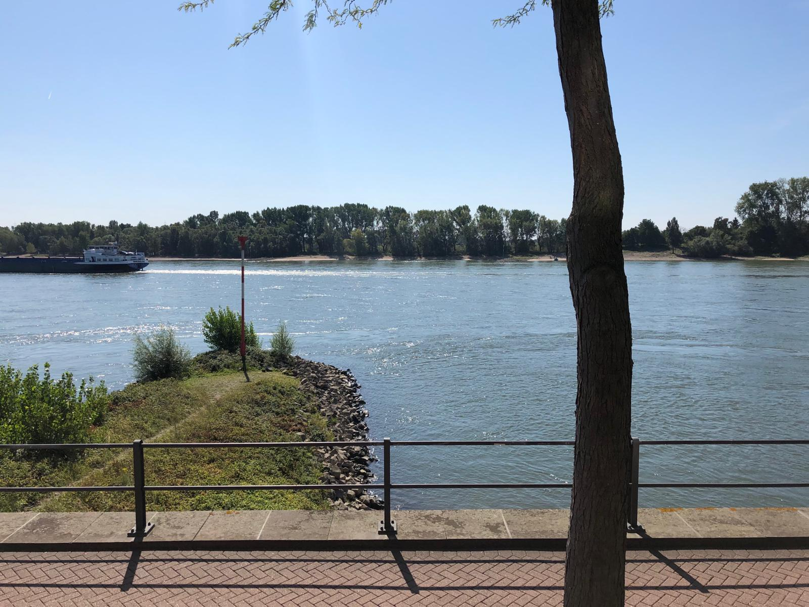 Rijn in Rees Duitsland