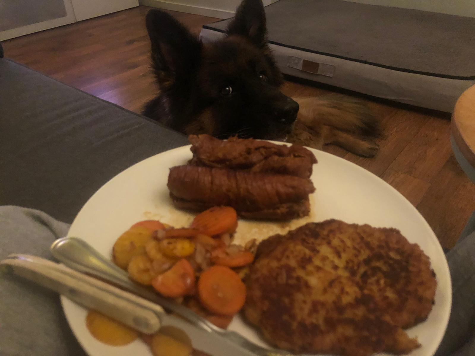 Vince aast op eten